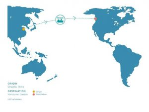 The Supply Chain By Sea